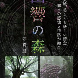 天城「幽響の森」写真展