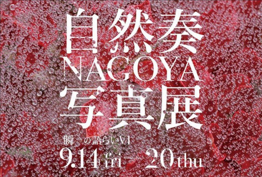 自然奏名古屋写真展